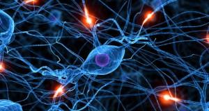 מיכאל לייטמן - מוח איש חיבור קשרים
