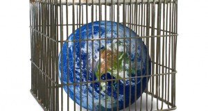 חכמת הקבלה - העולם בתוך כלוב