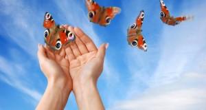 מיכאל לייטמן - ידיים אישה פרפרים שמיים