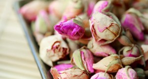 חכמת הקבלה - פרחים מיובשים