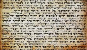 הרב לייטמן - תורה