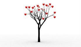 הרב לייטמן - עץ עם לבבות
