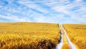 חכמת הקבלה - נוף טבע שמיים