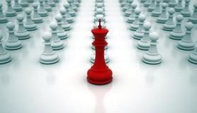 הרב לייטמן - שחמט מלך חיילים אנשים