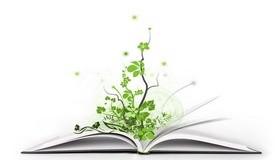 חכמת הקבלה - ספר עץ שפה ענפים