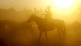 מיכאל לייטמן - איש רוכב סוס טבע