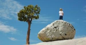 אבן'שמים, עץ, אושר