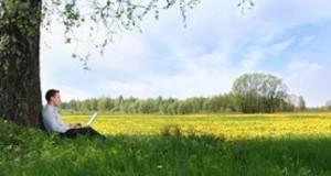 איש קורא בשדה