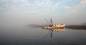 ים אניה השתקפות
