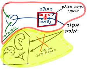 2013-10-21_rav_kvutza-ve-afatza_lesson_02